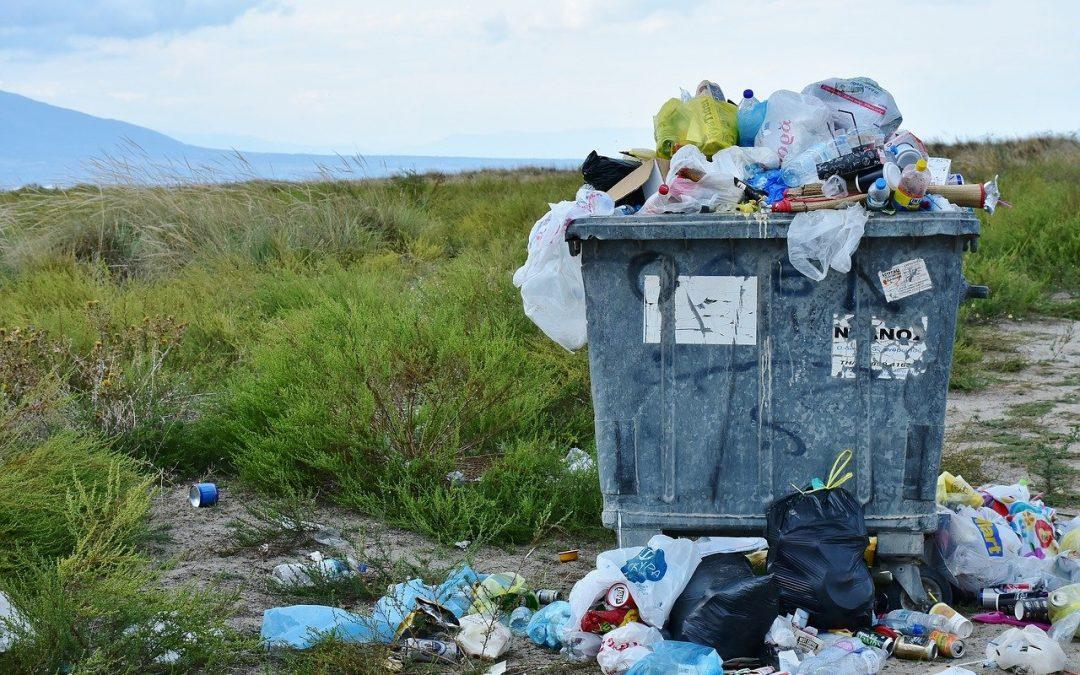 Zero Waste Club – Müll-Sammelaktion in Overath